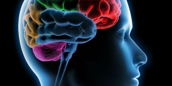"""Crises de Ausência – um tipo de Epilepsia A crise de ausência, também conhecida como o """"pequeno mal"""", costuma durar entre 10 a 30 segundos e provoca no paciente um […]"""